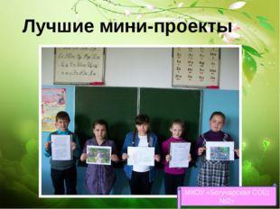 Лучшие мини-проекты МКОУ «Богучарская СОШ №2»