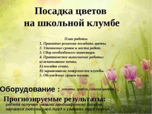Посадка цветов на школьной клумбе План работы 1. Принятие решения посадить ц
