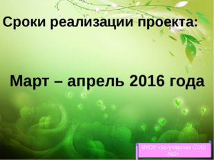 Сроки реализации проекта: Март – апрель 2016 года МКОУ «Богучарская СОШ №2»