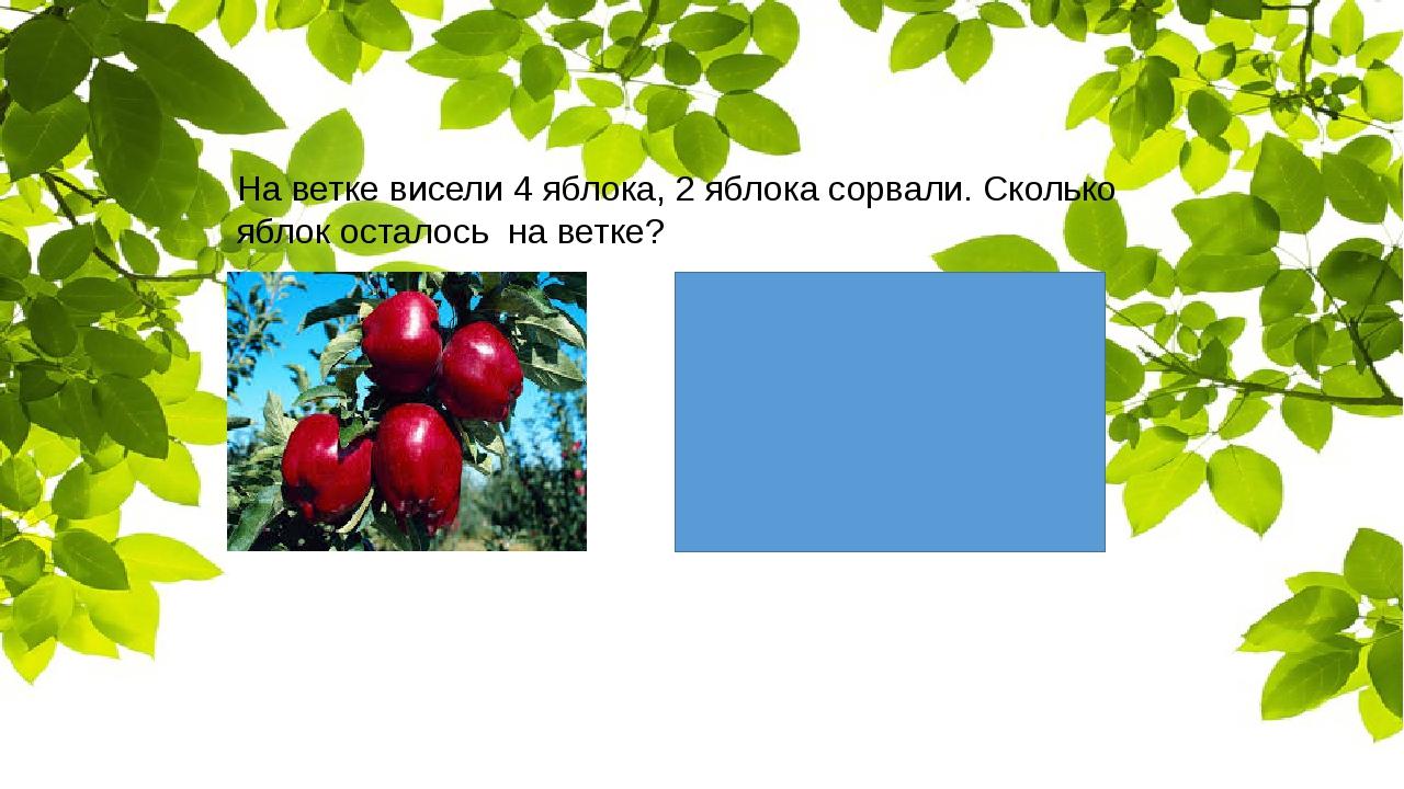 На ветке висели 4 яблока, 2 яблока сорвали. Сколько яблок осталось на ветке?
