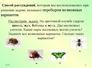 Рассмотрим задачу. На цветочной клумбе сидели шмель, жук, бабочка и муха. Дв