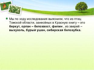 Мы по ходу исследования выяснили, что из птиц Томской области, занесёных в Кр
