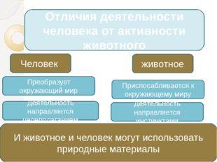 Отличия деятельности человека от активности животного Человек Преобразует окр