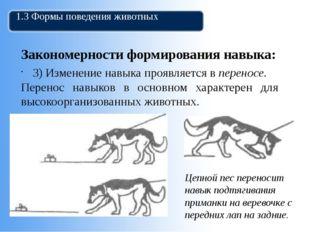 1.3 Формы поведения животных Закономерности формирования навыка: 3) Изменение
