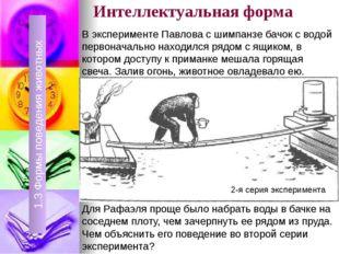 Интеллектуальная форма 1.3 Формы поведения животных 1.3 Формы поведения живот