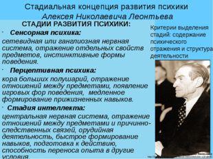Стадиальная концепция развития психики Алексея Николаевича Леонтьева СТАДИИ Р