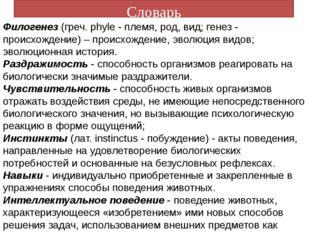 Словарь Филогенез (греч. phyle - племя, род, вид; генез - происхождение) – пр