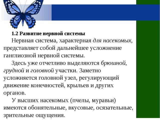 1.2 Развитие нервной системы Нервная система, характерная для насекомых, пре...