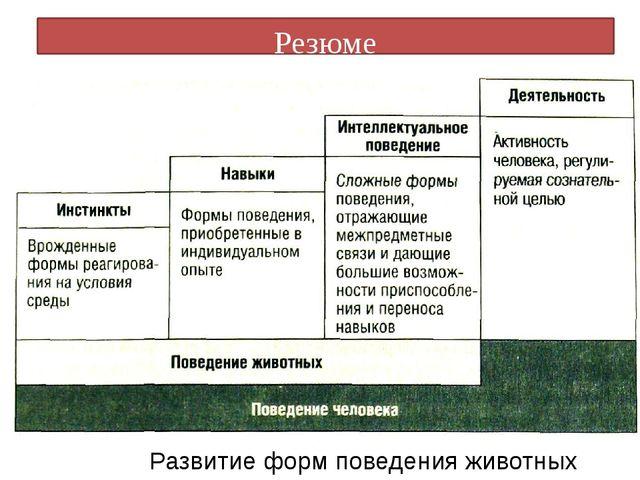 Резюме Развитие форм поведения животных