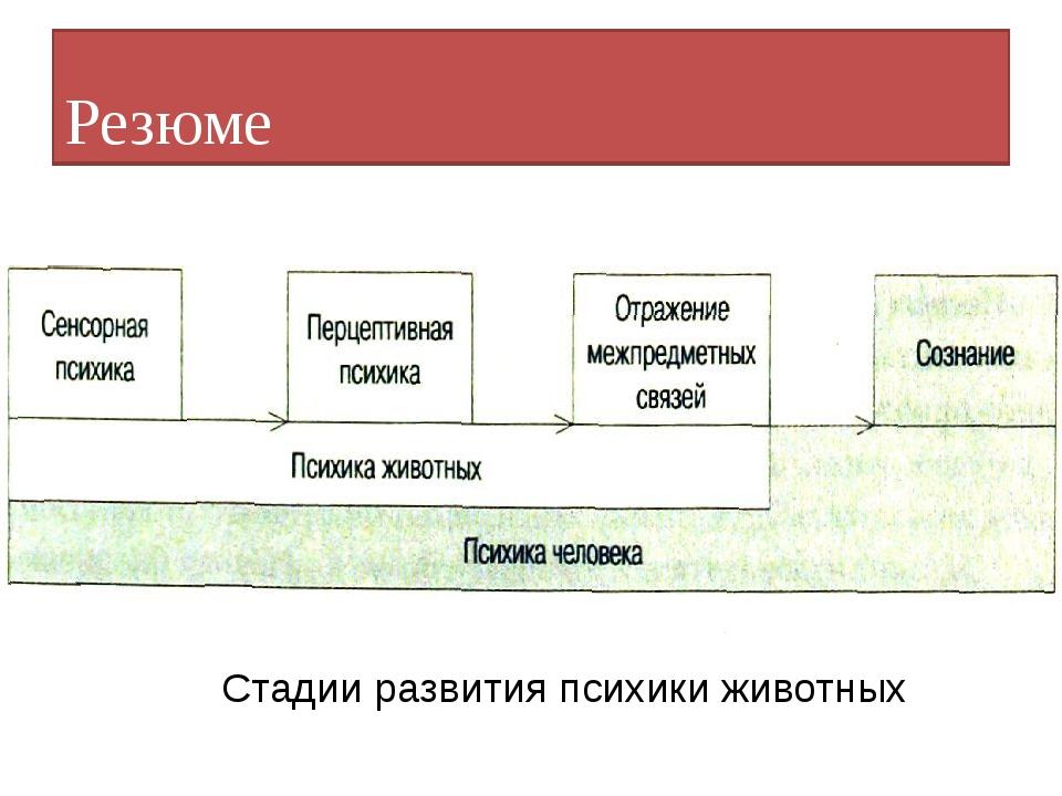 Резюме Резюме Стадии развития психики животных