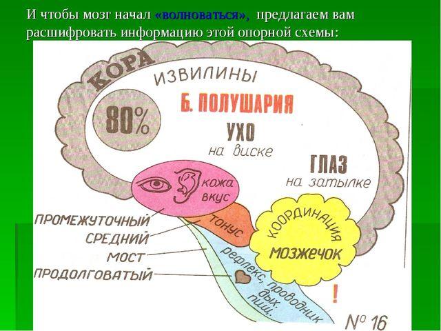 И чтобы мозг начал «волноваться», предлагаем вам расшифровать информацию этой...