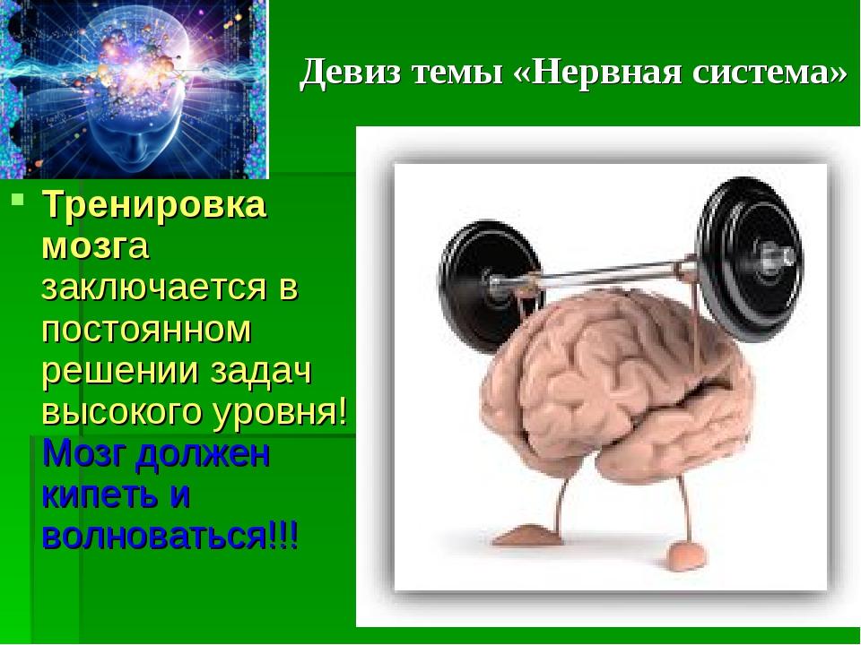 Девиз темы «Нервная система» Тренировка мозга заключается в постоянном решени...