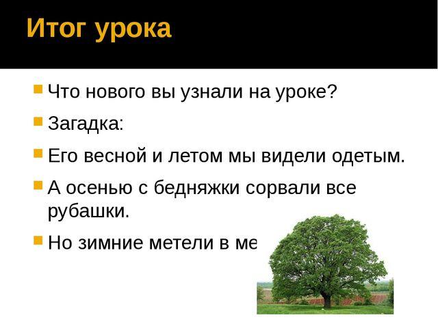 Итог урока Что нового вы узнали на уроке? Загадка: Его весной и летом мы виде...