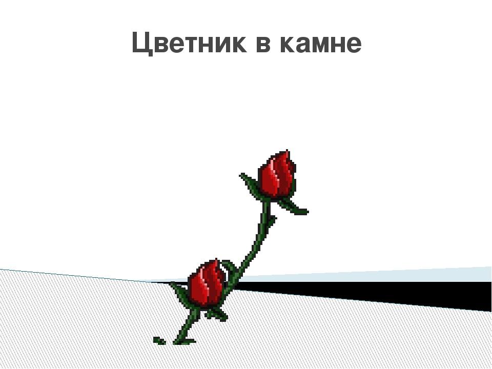 Цветник в камне