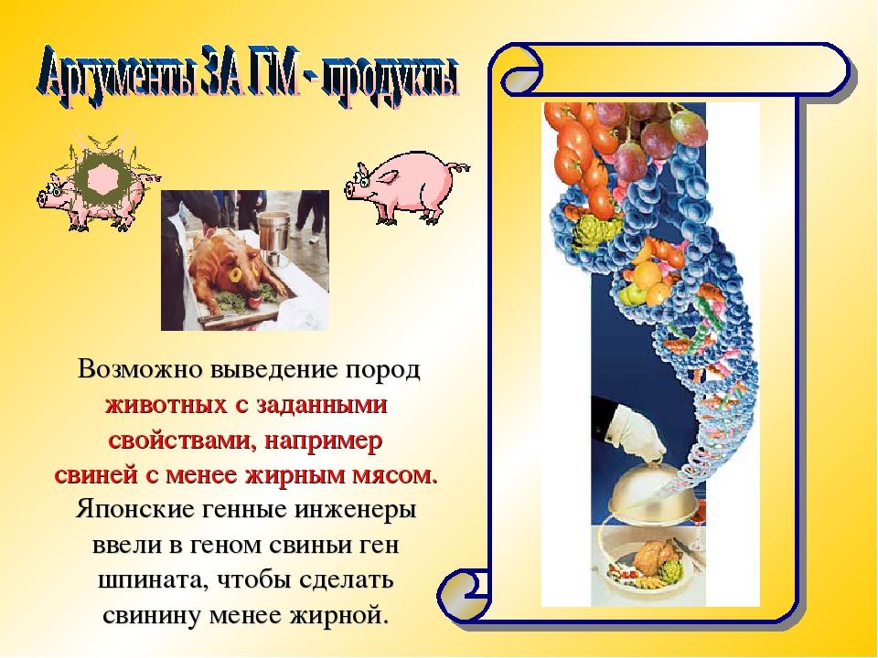 Возможно выведение пород животных с заданными свойствами, например свиней с м...