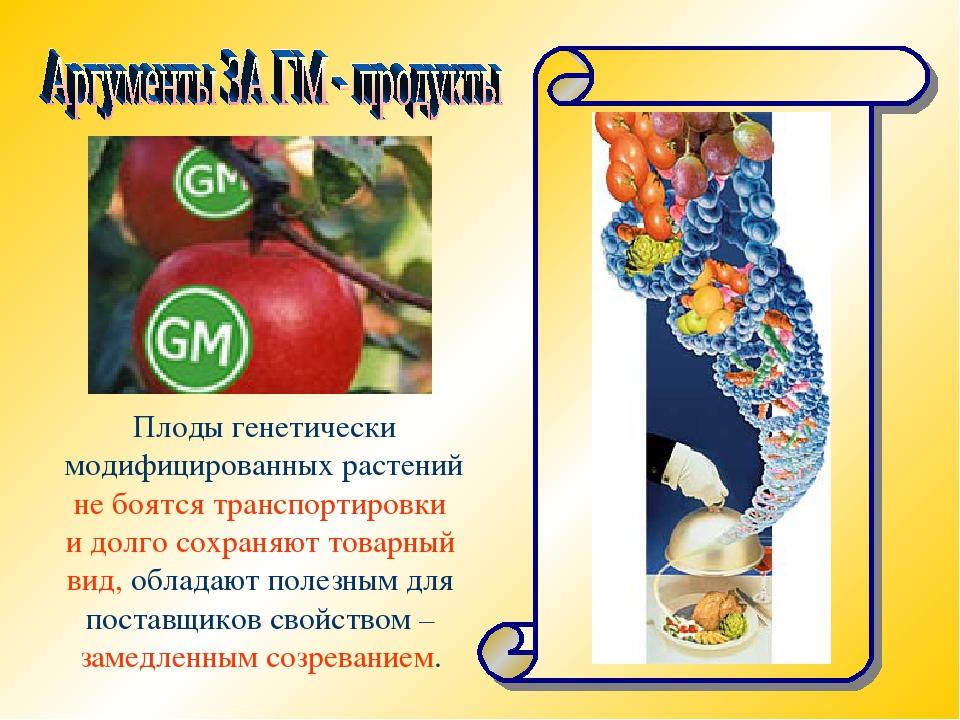Плоды генетически модифицированных растений не боятся транспортировки и долго...
