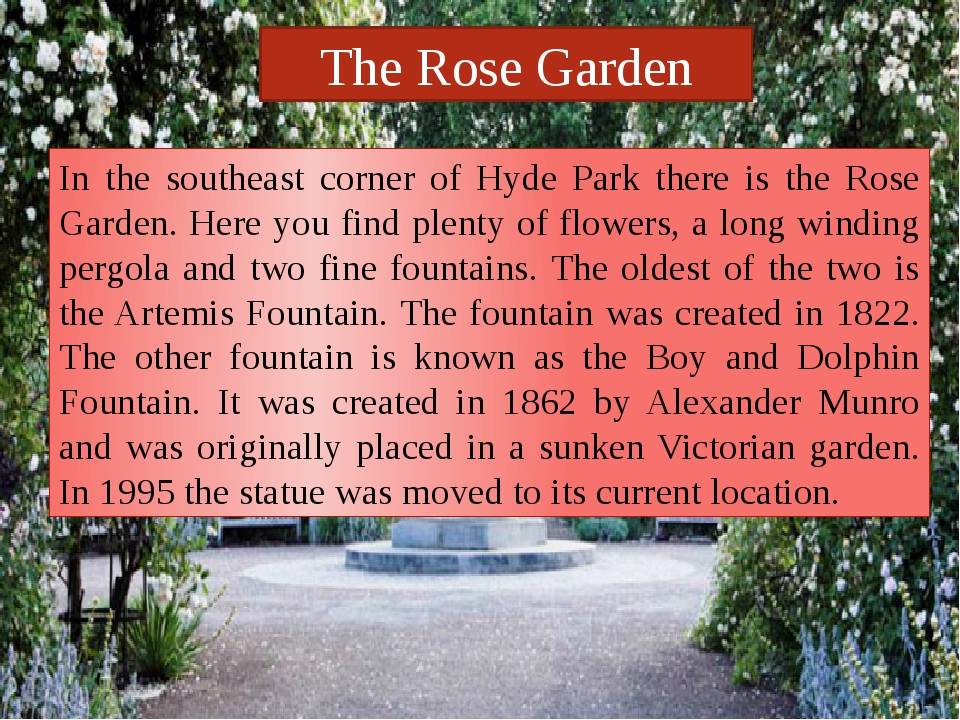 The Rose Garden In the southeast corner of Hyde Park there is the Rose Garden...