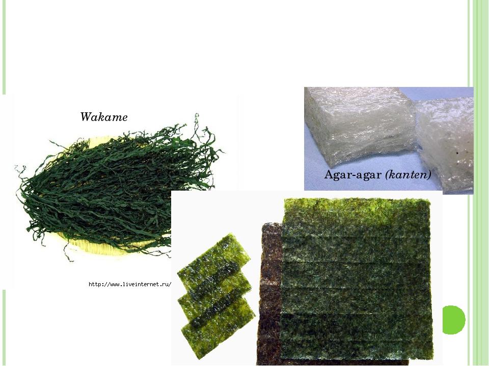 Wakame Agar-agar (kanten) Nori