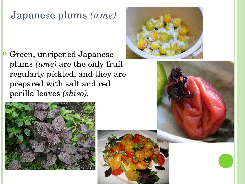 Japanese plums (ume) Green, unripened Japanese plums (ume) are the only fruit...