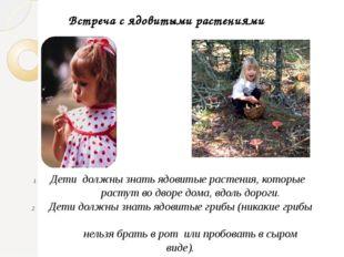 Встреча с ядовитыми растениями Дети должны знать ядовитые растения, которые р