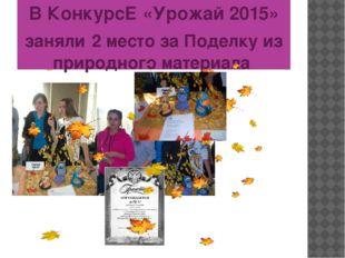 В КонкурсЕ «Урожай 2015» заняли 2 место за Поделку из природного материала