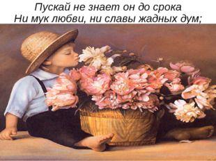Пускай не знает он до срока Ни мук любви, ни славы жадных дум;