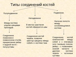 Типы соединений костей Полуподвижное Неподвижное Подвижное Между костями упру