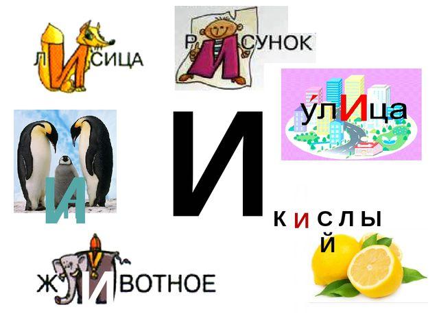 И Л И М О Н К С Л Ы Й П НГВИН И