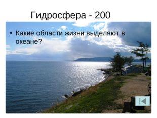 Гидросфера - 200 Какие области жизни выделяют в океане?