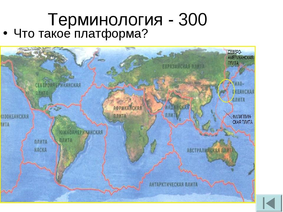 Терминология - 300 Что такое платформа?
