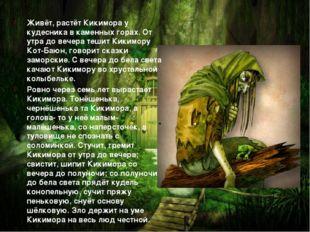Живёт, растёт Кикимора у кудесника в каменных горах. От утра до вечера тешит