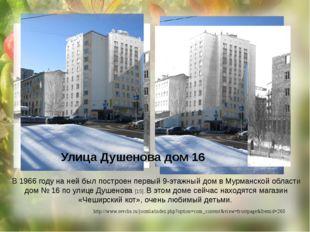 В 1966 году на ней был построен первый 9-этажный дом в Мурманской области дом