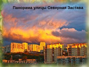 Улица Полярная Улица Душенова Панорама улицы Саши Ковалёва с моря Улица Нижн