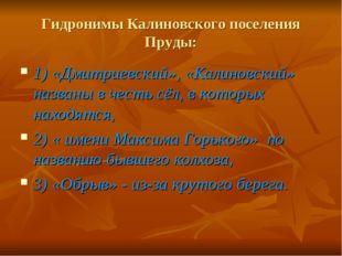 Гидронимы Калиновского поселения Пруды: 1) «Дмитриевский», «Калиновский» назв