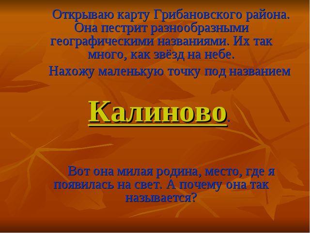 Открываю карту Грибановского района. Она пестрит разнообразными географическ...