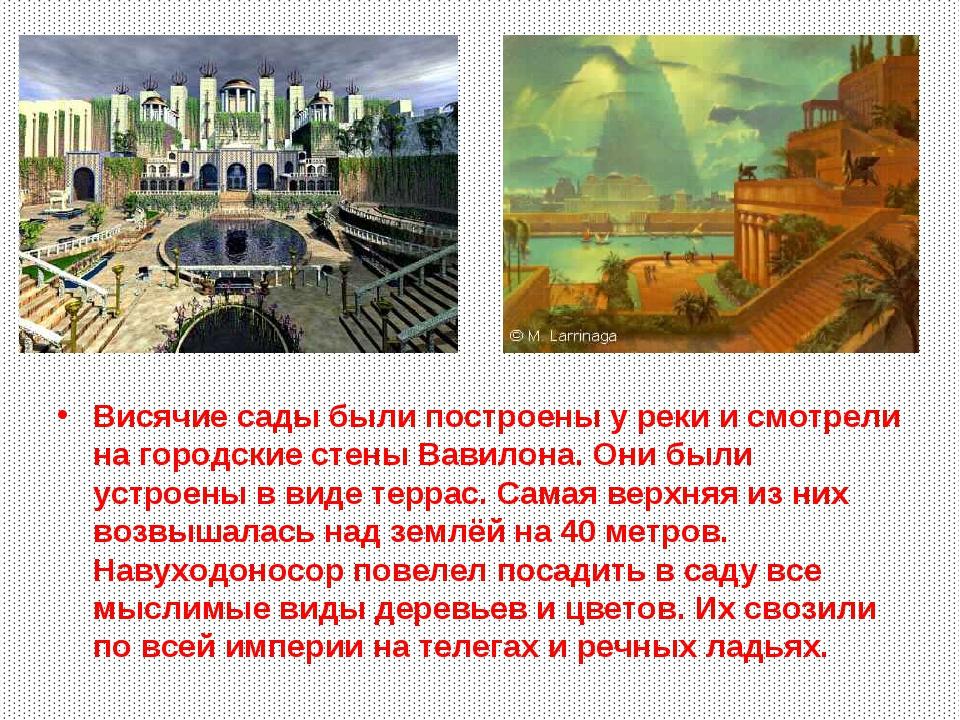 Висячие сады были построены у реки и смотрели на городские стены Вавилона. Он...