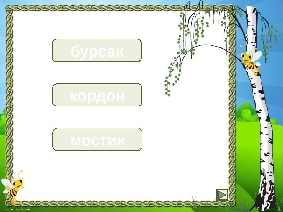 барсук бурсак кондор кордон москит мостик