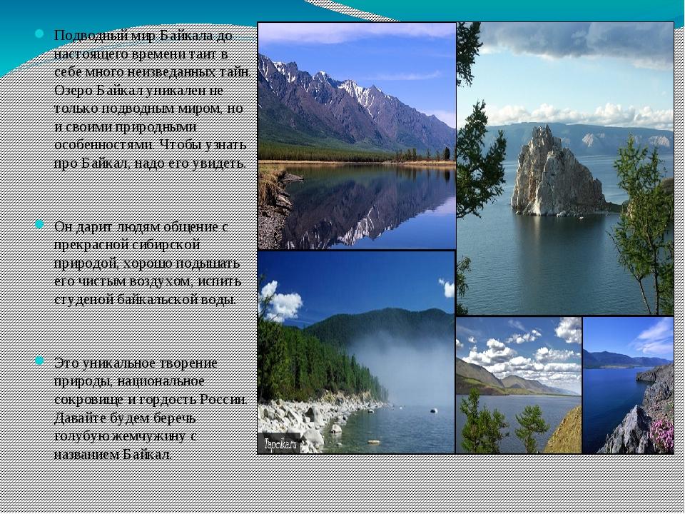 Подводный мир Байкала до настоящего времени таит в себе много неизведанных та...