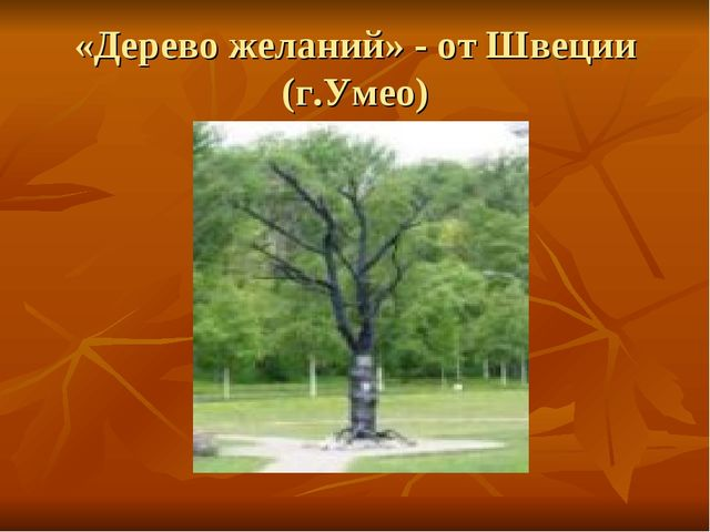 «Дерево желаний» - от Швеции (г.Умео)