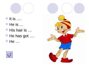 It is …. He is … His hair is … He has got …. He …