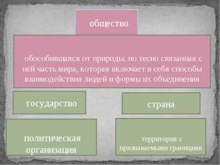 страна государство общество политическая организация территория с признаваемы