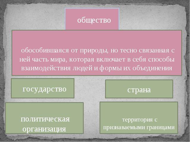 страна государство общество политическая организация территория с признаваемы...