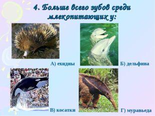 4. Больше всего зубов среди млекопитающих у: Г) муравьеда А) ехидны Б) дельфи