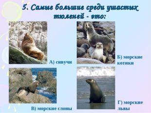 5. Самые большие среди ушастых тюленей - это: Г) морские львы А) сивучи Б) мо