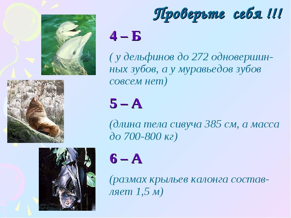 Проверьте себя !!! 4 – Б ( у дельфинов до 272 одновершин-ных зубов, а у мурав...