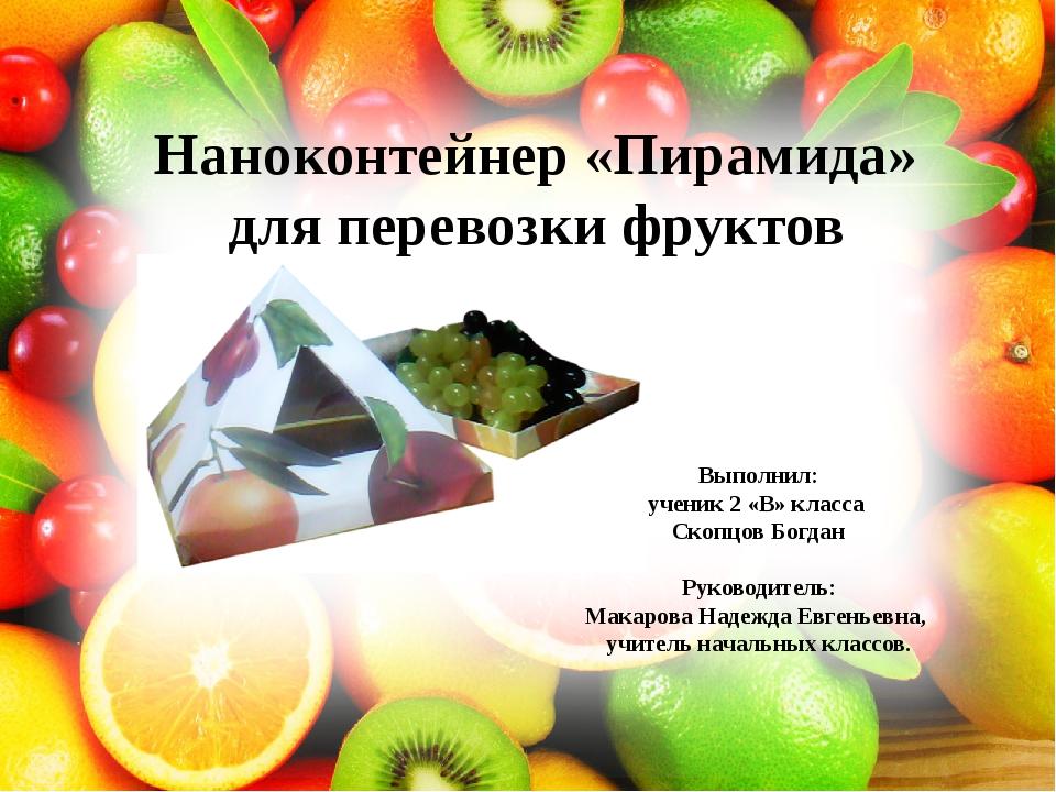 Выполнил: ученик 2 «В» класса Скопцов Богдан Руководитель: Макарова Надежда Е...