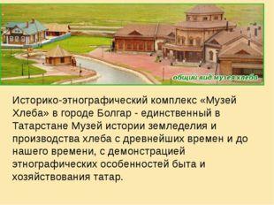 Историко-этнографический комплекс «Музей Хлеба» в городе Болгар - единственн