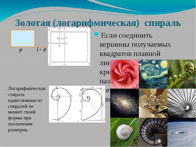 Золотая (логарифмическая)  спираль  Если соединить вершины получаемых квадра...
