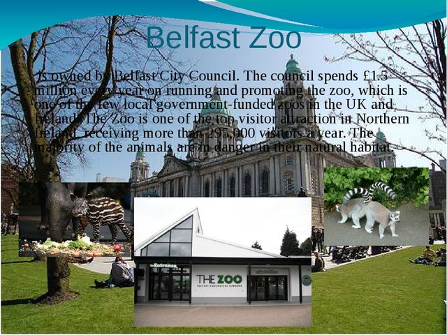 Belfast Zoo  is owned by Belfast City Council. The council spends £1.5 millio...