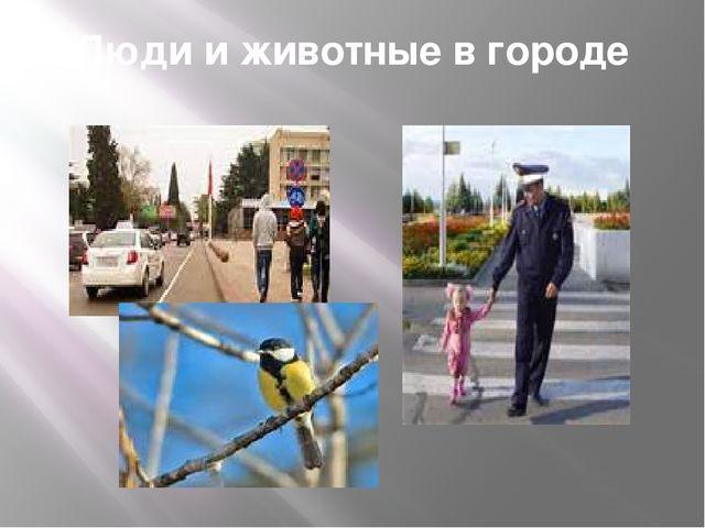 Люди и животные в городе